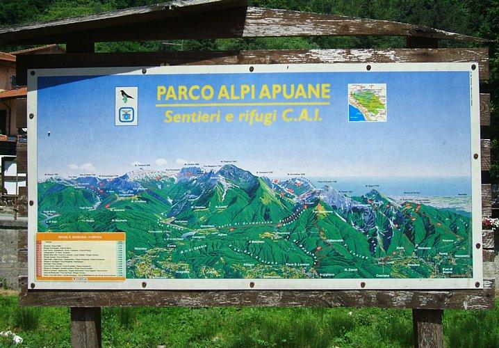 Carrara Carrara